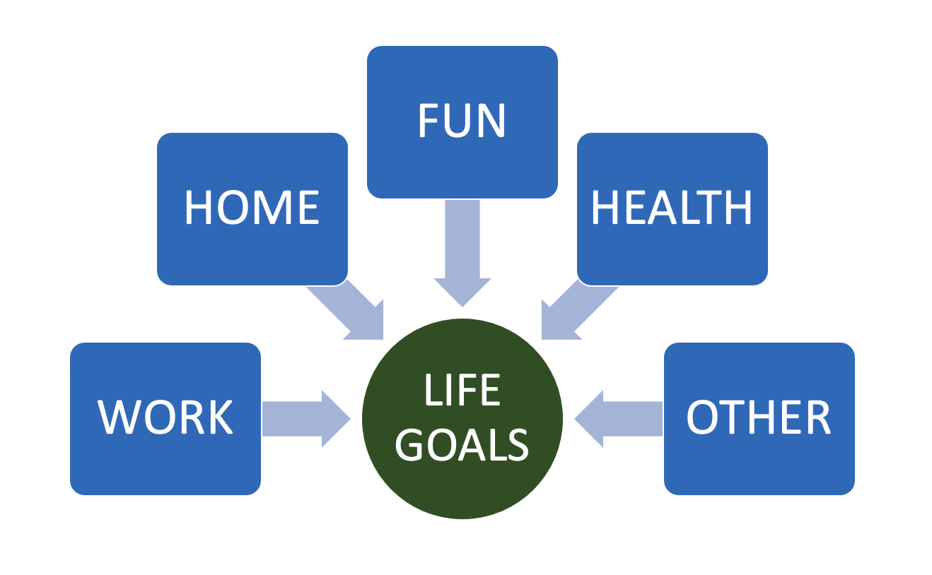 Life goals include work, home, fun, health, and other areas